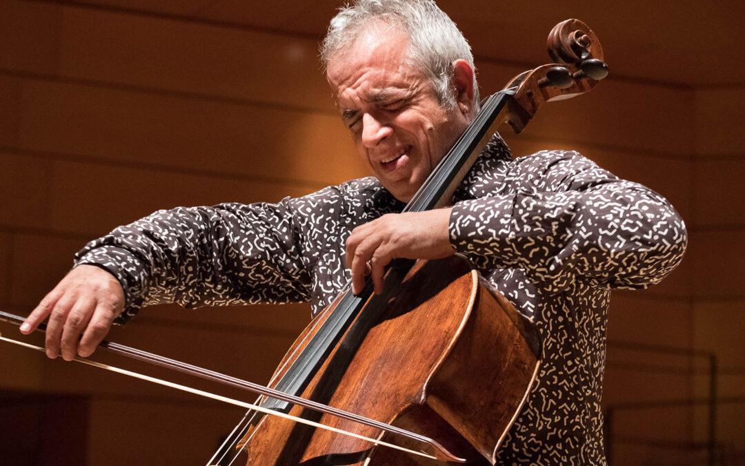 Un violoncello | 1